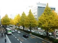 namiki_s.jpg